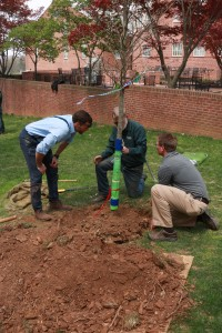 McDaniel College's Baker Hall received new trees in celebration of Earth Day thanks to students, university staff and Bartlett Tree Experts.