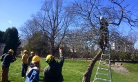 Planting, pruning and learning with the students of Landmark School in Beverly, MA