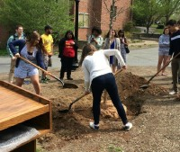 Getting students of Franklin & Marshall College involved in planting a tree to help beautify school grounds.