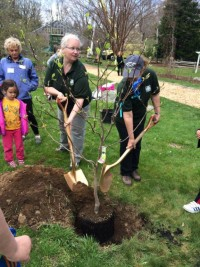 Family fun and tree planting were the order of the day at the ArborEarth Day Festival at the Bartlett Arboretum and Gardens.