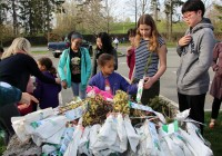 Faculty, staff, students, parents and siblings of a school in Brookline, MA planted seedlings for Arbor Day and Earth Day.
