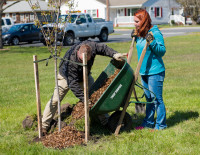 Lewes, DE was recently named a Tree City USA and we helped them celebrate with an Arbor Day tree planting!