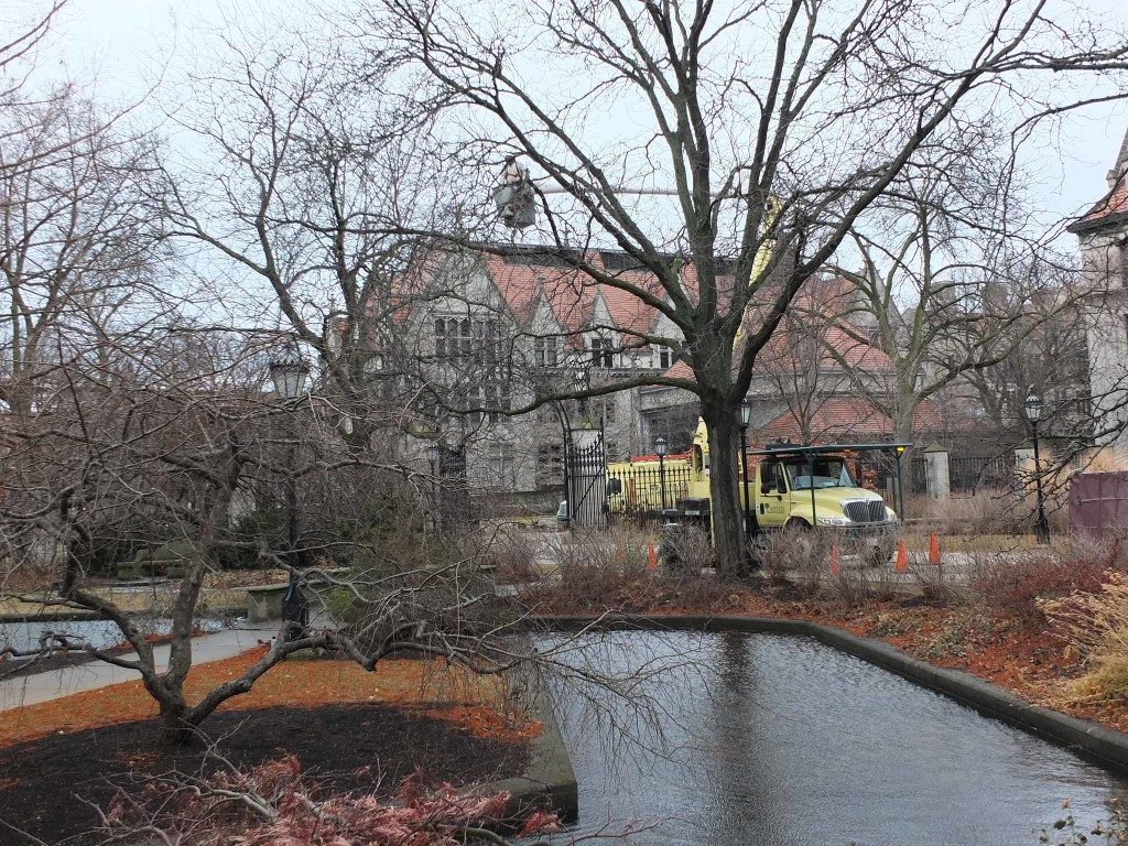 Bartlett crews perform dormant pruning on the trees that encircle Botany Pond.