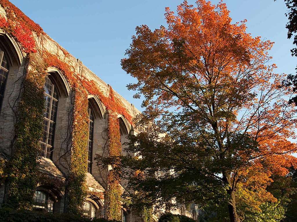 University of Chicago campus in the fall.
