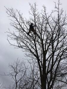 Foreman Jon Loughlin rescues a drone.