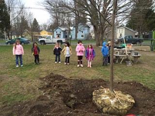 Tree Planting at Hamilton Central School
