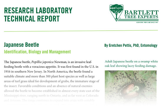 Japanese Beetles - Identification, Biology and Management
