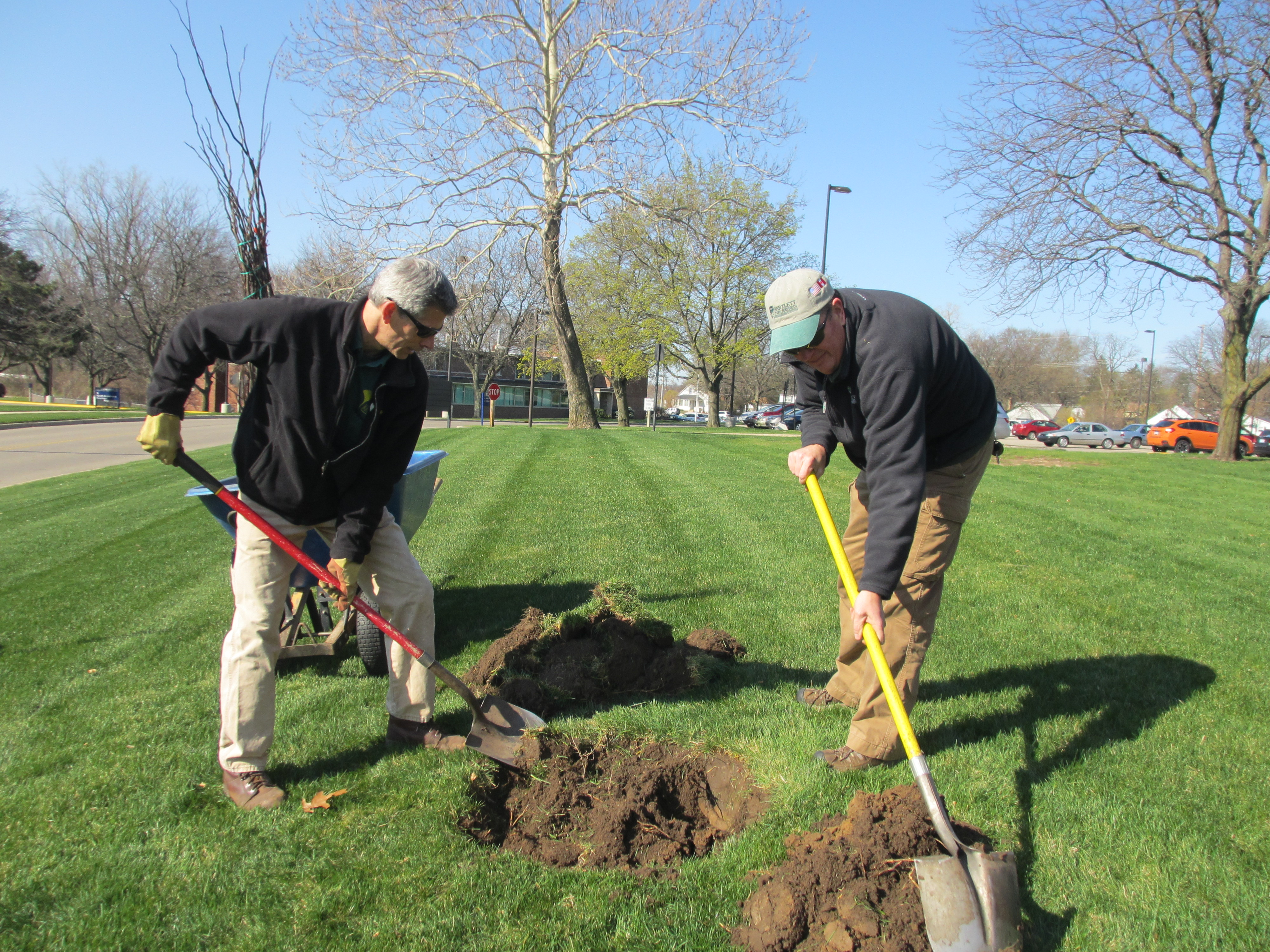 Tree Planting for Arbor Day